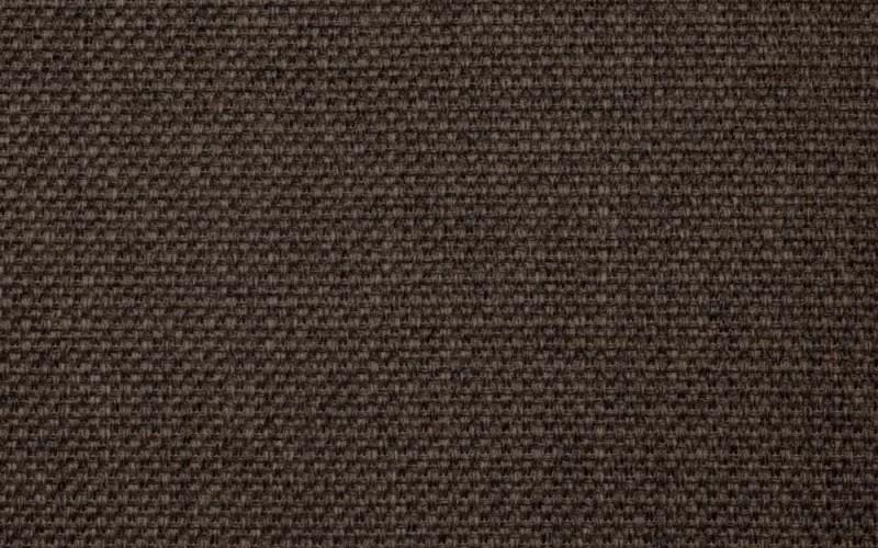 Tacoma brown